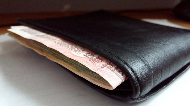 purse-388998_640