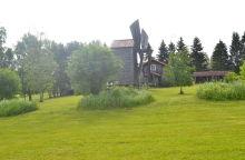 trawa, wiatrak, wieś, widok, drzewa